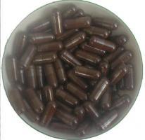 Reishi - Extrakt Kapseln