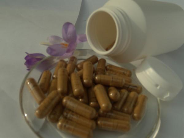 Cordyceps - Extrakt Kapseln